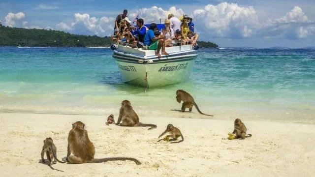 Visit Monkey Island